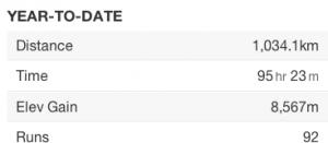 Running stats 2012